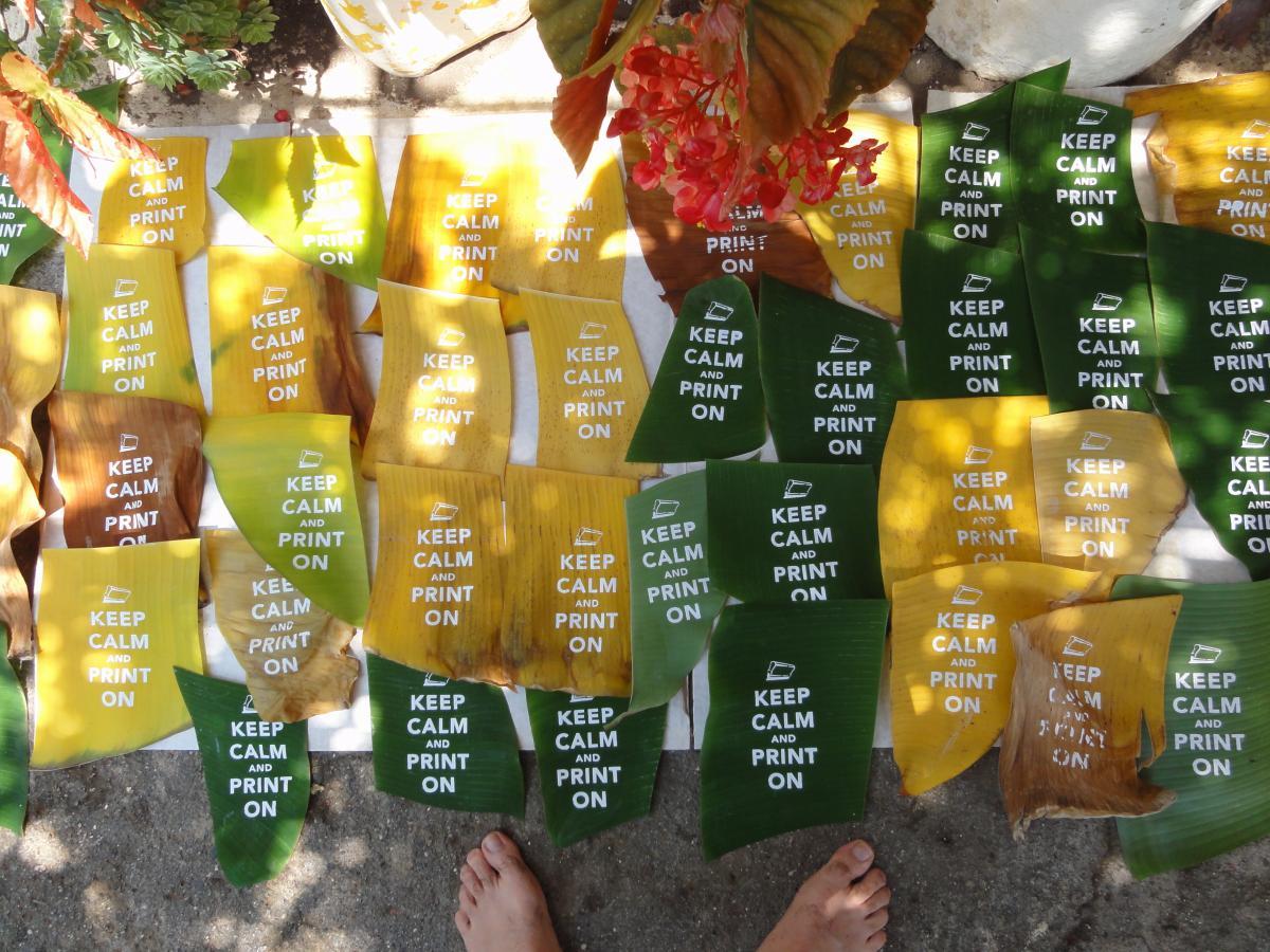 Μεταξοτυπία σε μπανανόφυλλα