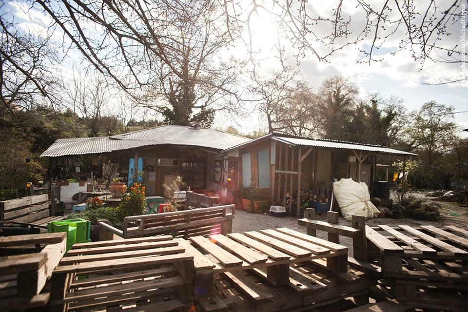 Τελαίθριον project: Το πρώτο σχολείο αυτάρκειας και βιωσιμότητας στη χώρα